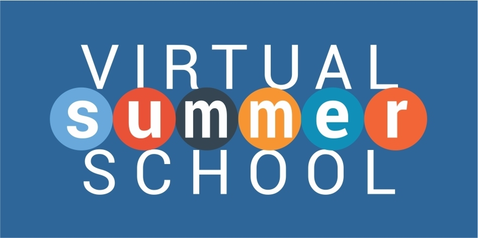 Virtual Summer School Survey